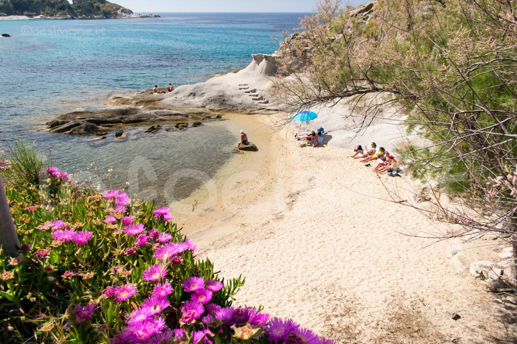 Spiaggia-Cotoncello-Marciana-8560